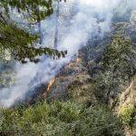 Wildfire Prevention in West Monroe, LA